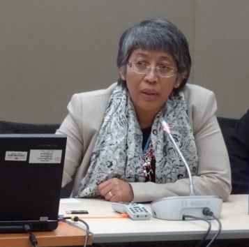 Yuyun Ismawati speaking at the mercury trade and supply side event