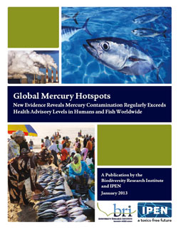 Global Mercury Hotspots Report Cover