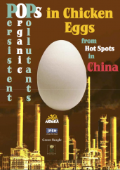POPs in Chicken Eggs from Hotspots in China