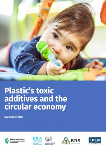 Plastic's Toxic Additives and the Circular Economy